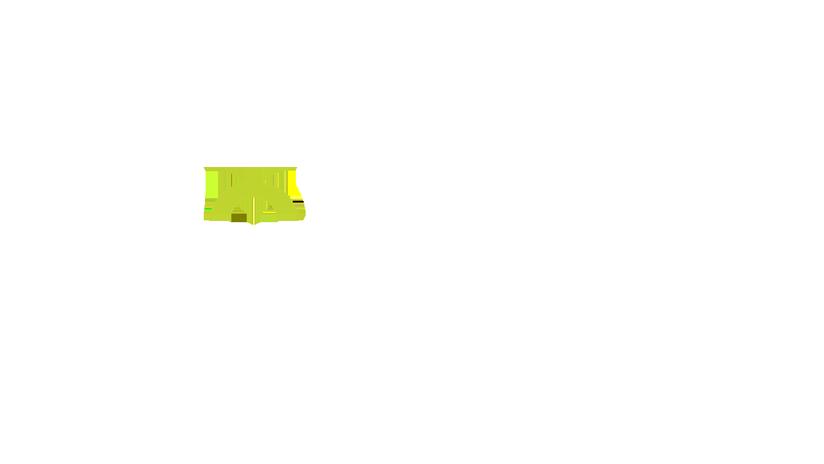Slide Graphic or Logo